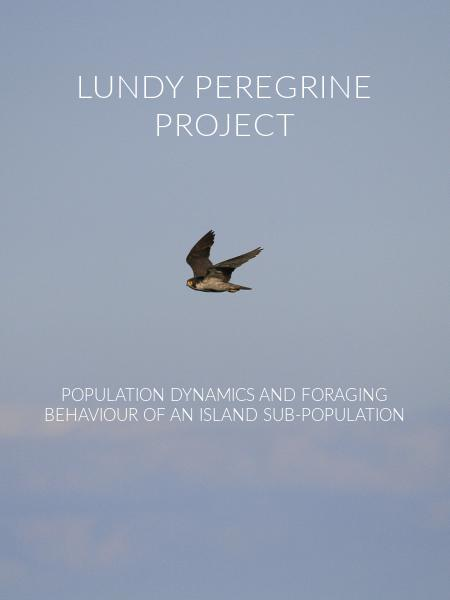 Lundy Peregrine Project
