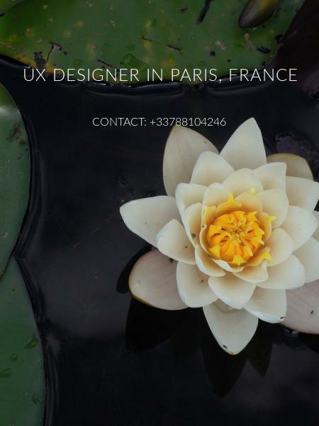 UX DESIGNER in Paris, France